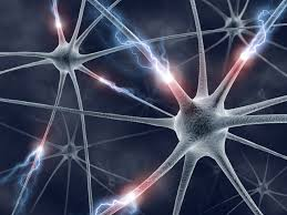 Neurofeedback State College pa